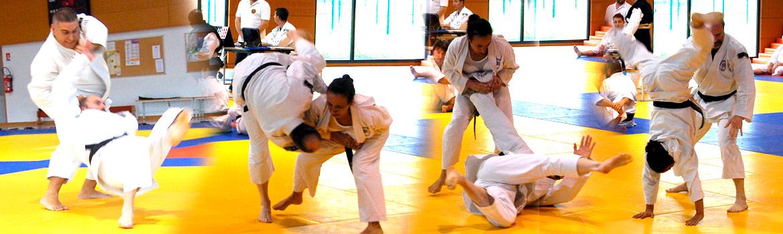Shorinji Kempo Bushido Club Como